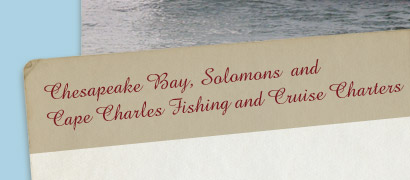 Chesapeake Bay, Solomons and Cape Charles Fishing and Cruise Charters